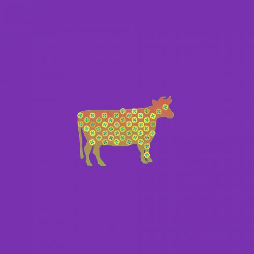 karvė, galvijai, vidaus, Moteris, gyvūnas, moo-karvė, karvė grafika