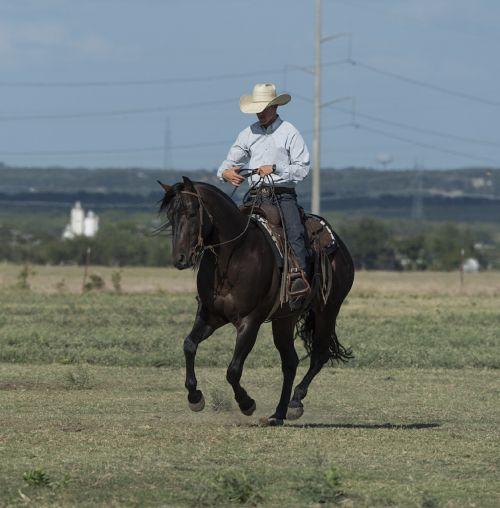 kaubojus, ketvirtis & nbsp, arklys, Jodinėjimas, treneris, ranča, senas & nbsp, į vakarus, texas, usa, Patinas, vyras, viešasis & nbsp, domenas, fonas, tapetai, raitelis, piktograma, jodinėjimas, iconic, simbolis, rancher, lasso, lynai, batai, džinsai, kaubojus & nbsp, skrybėlę, atsargos, gyvūnas, vakaruose, amerikietis, kaubojus