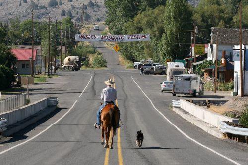 kaubojus, arklys, raitelis, šuo, gatvė, Miestas, steed, Vakarų, viešasis & nbsp, domenas, fonas, tapetai, oregonas, usa, vakaruose, Jodinėjimas, arkliai, jodinėjimas, šunys, važiuoti, simbolis, piktograma, iconic, kaubojus & nbsp, skrybėlę, džinsai, batai, kaubojus