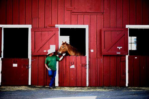 kaubojus, arklys, stabilus, senas & nbsp, į vakarus, usa, Patinas, vyras, viešasis & nbsp, domenas, fonas, tapetai, portretas, piktograma, jodinėjimas, iconic, simbolis, tvartas, batai, stovintis, stalas, galva, kaubojus & nbsp, skrybėlę, džinsai, kaubojus ir arklys