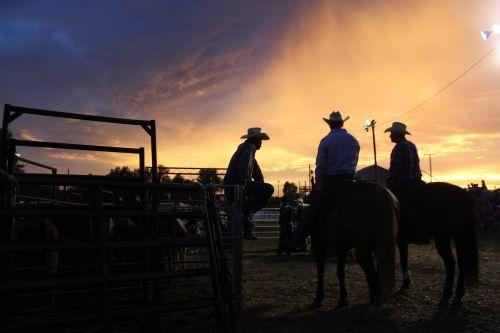 kaubojus,rodeo,vakaruose,skrybėlę,kaubojus fonas,vakarietiškas fonas,Laukiniai vakarai,kaubojus siluetas,ūkis