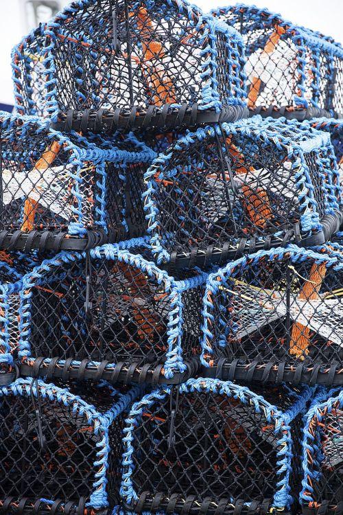 krabų puodą,žvejyba,puodą,spąstus,jūrų,neto,crabbing,krepšelis,Anglija