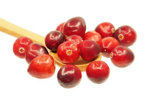 spanguolė,šaukštas,vaisiai,rūgštus,raudona,gamta,skanus,sveikata,medinis šaukštas,balta