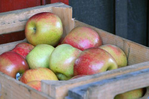 obuolys, obuoliai, žalios spalvos & nbsp, raudonos & nbsp, obuoliai, dėžė, derlius, maistas, vaisiai, vaisiai, obuolių dėžė