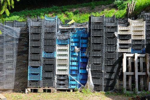 dėžutės,obuolių dėžutės,vyno dėžės,krūva,atsargos,netvarką,sumušti,derlius,weinlse,laikymo dėžė
