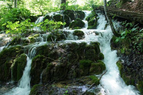 kroatija,ežerai,Nacionalinis parkas,kraštovaizdis,gamta,plitvice ežerai