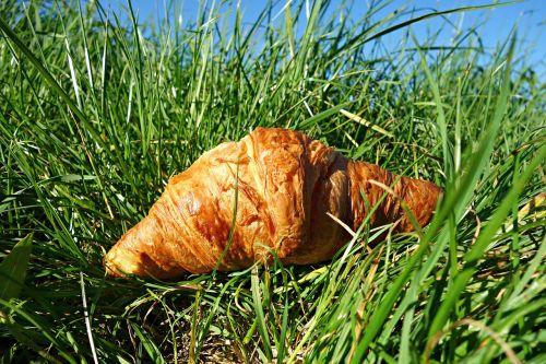 kruopos,Roll,duona,kepiniai,maistas,mityba,pusryčiai,ruda,kruopos ant žolės,iškylai,žolė