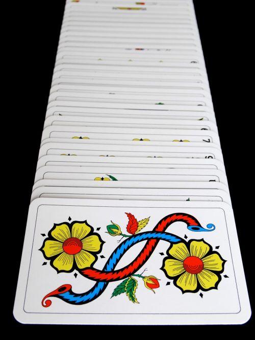 kubas,kortelės,JASS kortelės,kortų žaidimas,strategija,žaisti,vieta,laimėti,prarasti,pakabinti,kazino
