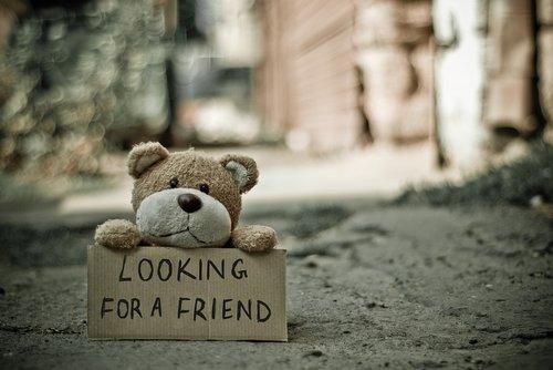 minkštas žaislas, pliušinis žaislas, meškiukas, rašysenos, vienišas, žinutė, lauke, vaizdiniu, Gatvė, žaislas