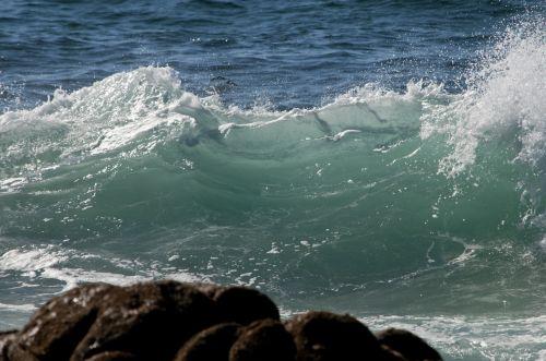 banga, kritimo & nbsp, banga, vandenynas, papludimys, jūra, bangos, vanduo, garbanojimo banga