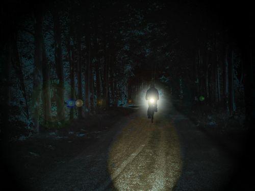 dviratininkai,naktis,parkas,keista,prožektorius,šviesa,toli,namai,naktinis važiavimas,kelias namo,kelias,miškas,dviratis
