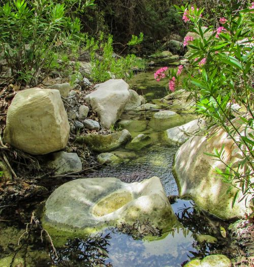 Kipras,akamas,Nacionalinis parkas,avakas gorge,gamta,srautas