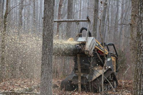 dafas,miško pramoninis smulkintuvas,šepetys,smulkintuvai,miškininkystė,mašina,augmenijos valdymas