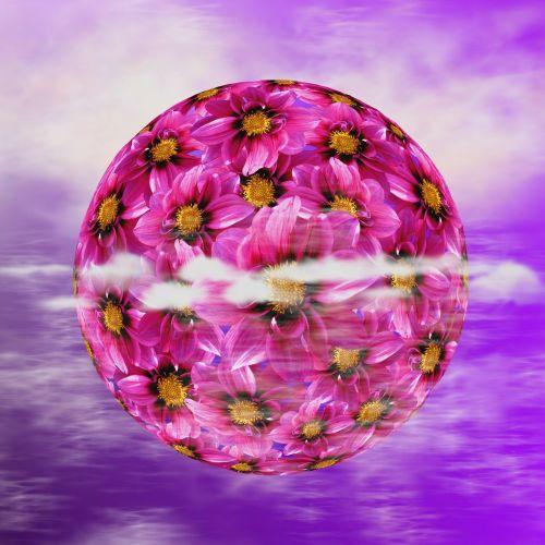 Dahlia, Dahlia Dahlia, Žiedas, Žydėti, Gėlė, Gamta, Augalas, Gėlės, Flora, Grafinis Pasaulis, Gražus, Violetinė, Grafinė Flora, Spalva, Astronomija, Visi, Erdvė, Planeta, Visata, Galaktika, Hiimmelskoerper