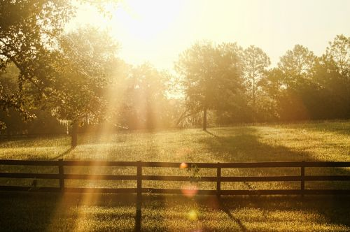 dienos pertrauka,aušra,saulė,šviesa,tvora,ūkis,diena,rytas,pertrauka,dangus,gamta,saulėtekis,Saulėlydis,spalva,lauke,aišku