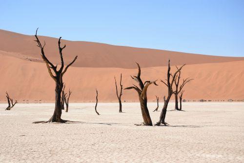 miręs vlei,Namibija,dykuma,kopos,smėlis,sausas,afrika,sudegino