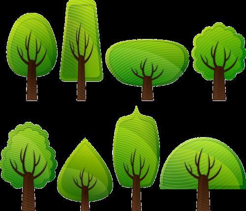 lapuočių medžiai,miškas,medžiai,plačialapiai medžiai,plačialapiai medžiai,lapuočių medžiai,krūmai,flora,žalias,gamta,augalai,nemokama vektorinė grafika