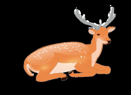 elnias,ragas,pasiūtas avinas,gyvūnas,laukiniai,laukinė gamta,žinduolis,raguotas,šiaurės elniai,Patinas,miškas,medžioklė,žiema,vektorinis elnias,raguotas elnias,mielas,laukinis gyvūnas,fonas skaidrus,elnių lėlės,blizgantis,grafika