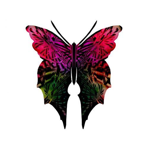 drugelis, drugeliai, žaibiški & nbsp, sparnai, drugelis & nbsp, kolekcija, kolektorius, rinkimas, vabzdys, prizmė, opalescencija, pearly, raudona, žalias, dažytas & nbsp, stiklas, subtilus raudona žalia drugelis