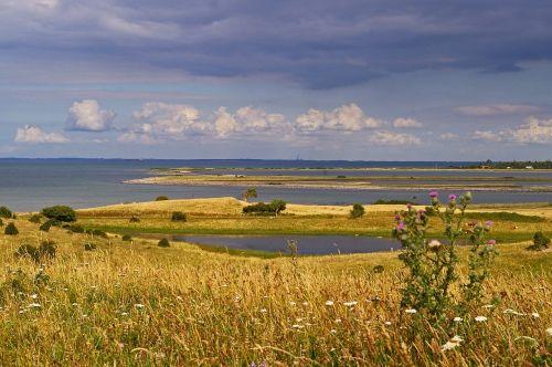 denmark,Danijos pakrantė,sala,fyns coved,Baltijos jūra,danish baltic,Danijos balto paplūdimys,midijų lukštai,kiaukutiniai moliuskai,Danijos paplūdimys,jūrų,ant ežero,gamta,jūra,mėlynas,paplūdimys ir jūra,papludimys,dangus,vanduo,šventė,Šiaurės jūra,vasara,mėlynas dangus,kranto,perspektyva,saulė,kraštovaizdis,poilsis,vaizdingas,pranešta,gamtos rezervatas