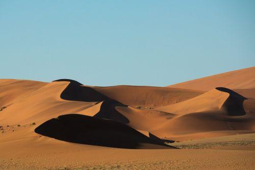 dykuma,smėlis,namib,kopos