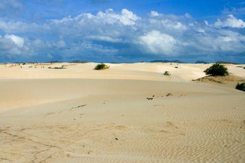 dykuma,smėlis,boa vista,cape verde,Cape Verde sala,deserto de peruviana,vienišas,vienatvė,kraštovaizdis,gamta