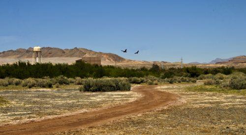 dykuma, raudona & nbsp, dirvožemio, Arizona, kelias, purvo & nbsp, takas, raudona, paukštis, kraštovaizdis, lauke, gamta, vaikščioti, vaikščioti, žygiai, dykumos purvo kelias