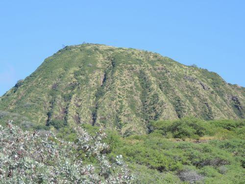 deimantas, galva, Hawaii, Labas, kalnas, medžiai, kraštovaizdis, diamond head hawaii