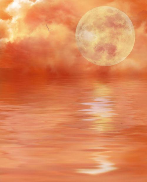 skaitmeninis menas,vanduo,debesys,mistikas,gamta,dangus,kraštovaizdis,romantiškas,oranžinė,mėnulio šviesa,peizažai,gulbė,nuotaika,fonas