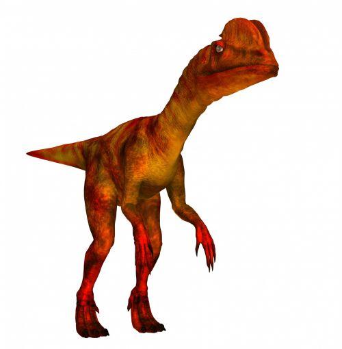 dilophosaurus & nbsp, dinozauras, dinozaurai, gyvūnas, laukiniai, Iliustracijos, monstras, priešistorinis, istorija, teropod & nbsp, dinozauras, iškastinis, dilophosaurus & nbsp, wetherill, Arizona, dilophosaurus dinozauras