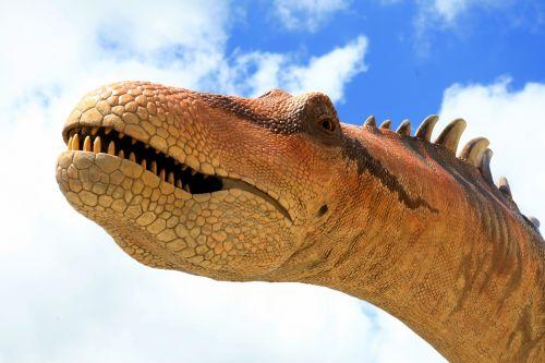 dinozauras, gyvūnas, priešistorinis, išnykęs, senas, dinozauras