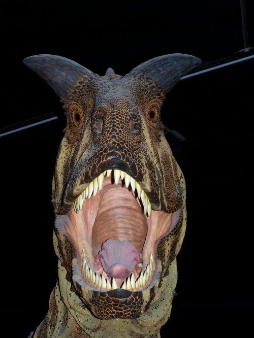 dinozauras,muziejus,mėsėdis,paleontologija,pavojingas,dantys,plėšrūnas,siaubingas,paroda
