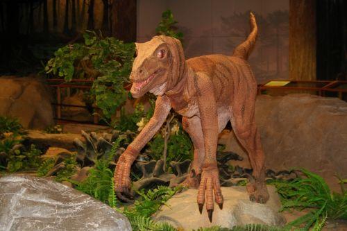 dinozauras, priešistorinis, muziejus, las & nbsp, vegas, žalias, didelis, dinozauras muziejuje 2