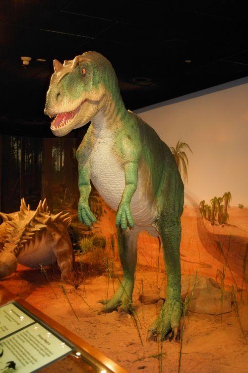 dinozauras, priešistorinis, muziejus, las & nbsp, vegas, žalias, didelis, dinozauras muziejuje