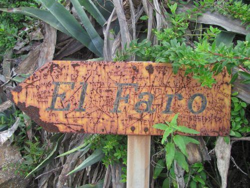 katalogas,Tenerifė,švyturys,kelias,žygiai,gamta,migracijos kelias,takas,laisvalaikis,атлантический,šakės kelyje,skydas,žygis,toli,džiunglės,veikla,kraštovaizdis,kalnas,kalnų takas,kalnų kelias,daugiau,miškas,miško takas,turistinis