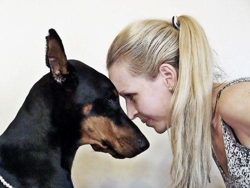 Dobermanas,blondinė moteris,Draugystė,galva,meilė