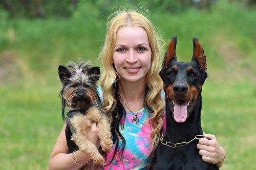 Doberman, šunys, Draugystė, meilė, apkabinimas