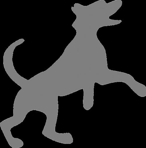 šuo,pilka,šunys,laimingas,šokinėja,nemokama vektorinė grafika