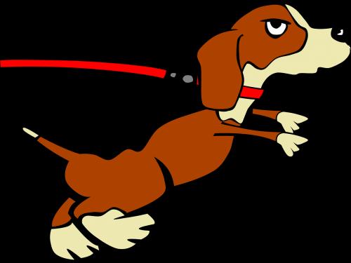 šuo,šuniukas,leashed,vidaus,šunys,šunys,naminis gyvūnėlis,gyvūnas,mielas,traukimas,nemokama vektorinė grafika
