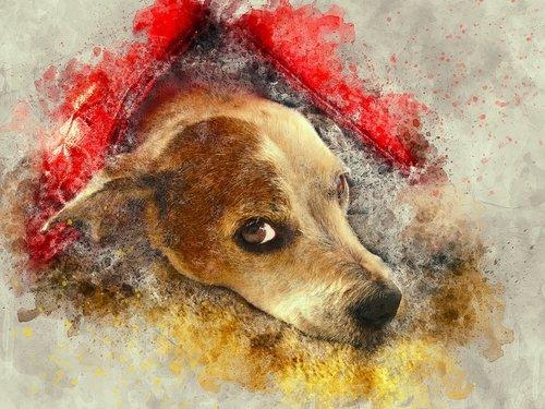 šuo, ieško, gyvūnas, menas, akvarelė, Vintage, šuniukas, meninis, dizainas, Anotacija, Aquarelle, dažų Šļakstēties, skaitmeninis menas, skaitmeninis dažai, piešimo, Nemokama iliustracijos