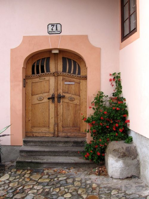 durys,tikslas,namo įėjimas,senos durys,mediena,priekinės durys,įvestis,durys,vartai,pilis,senas