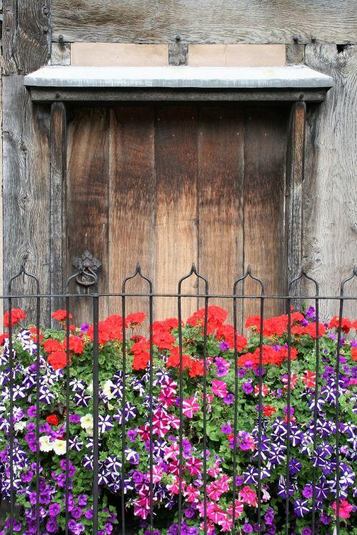 durų,sodas,Šekspyras,tvora