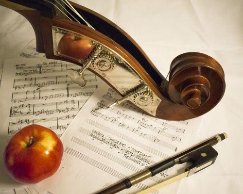kontrabosas,muzika,lankas,obuolys,lapo muzika,Klasikinė muzika,orkestras,kompozicija,paktas