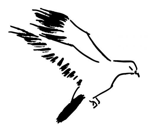 balandis, skrydis, paukštis, Sumi-e, juodas rašalas, rytus, zen, dažymas, tušas, černilama, stilius, vektorius, vaizdas