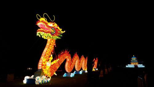drakonas,žibintas,kinai,apdaila,lempa,festivalis,rytietiškas,Kinija,asija,kinų drakonas,tradicinis,tradicija,šventė,spalvinga