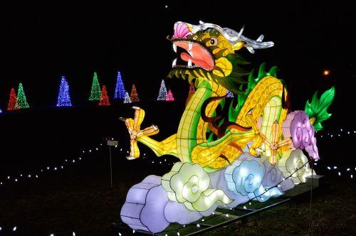 drakonas,žiburių šventė,šventė,kinai,šventė,festivalis,kultūra,švesti,Kinija