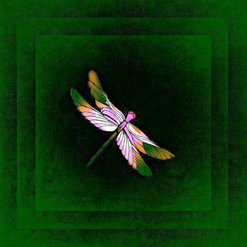 lazda,rėmas,vaizdas,kontūrai,spalva,įrėminti,žalias