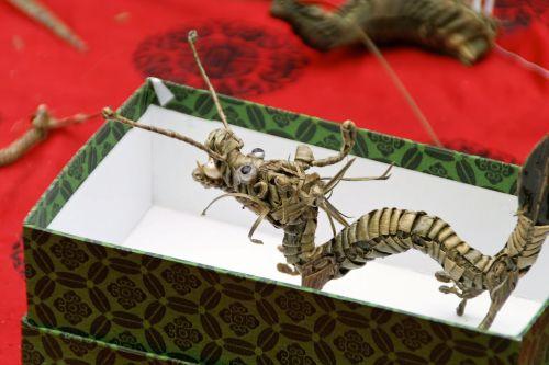 drakonai,Tinker,dovanos