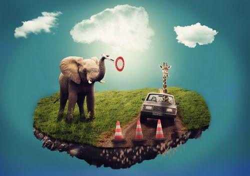 svajonė,sirrealis,kompozicija,dramblys,žirafa,automatinis,sala