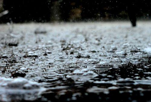 lašai,lietus,lietaus lašai,vanduo,skystas,gamta,mėlynas,švarus,atspindys,vandens lašai,vandens lašas,aišku,makro,banga,purslų,ripple,skaidrus,šlapias,ratas,Grynumas,lašelis,burbulas,purslų,paviršius,vandens purslų,judėjimas,Saunus,spalva,šaltas,šviesa,gerti,liūtys,rasa,blizgantis,modelis